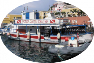 ponza diving center nettuno